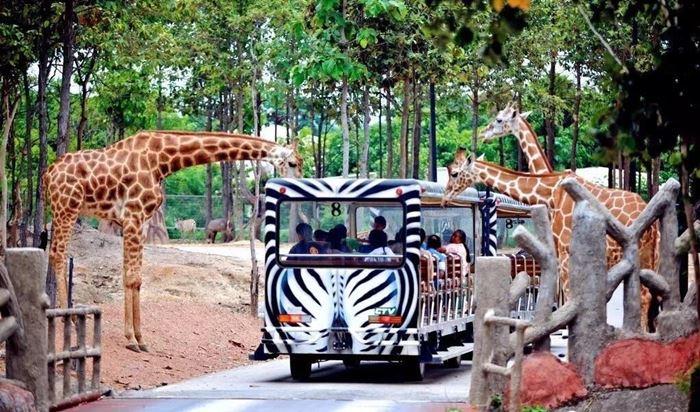 Sở thú Chiang Mai